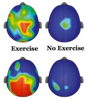 exercisebrainimage